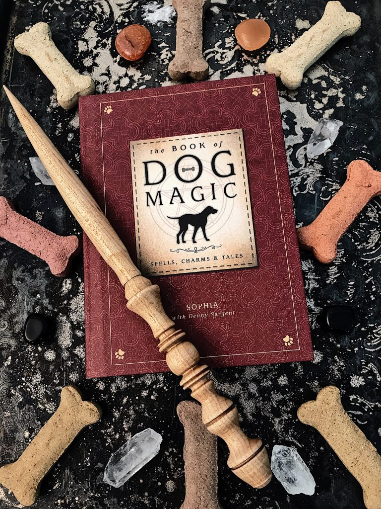The Book of Dog Magic book review