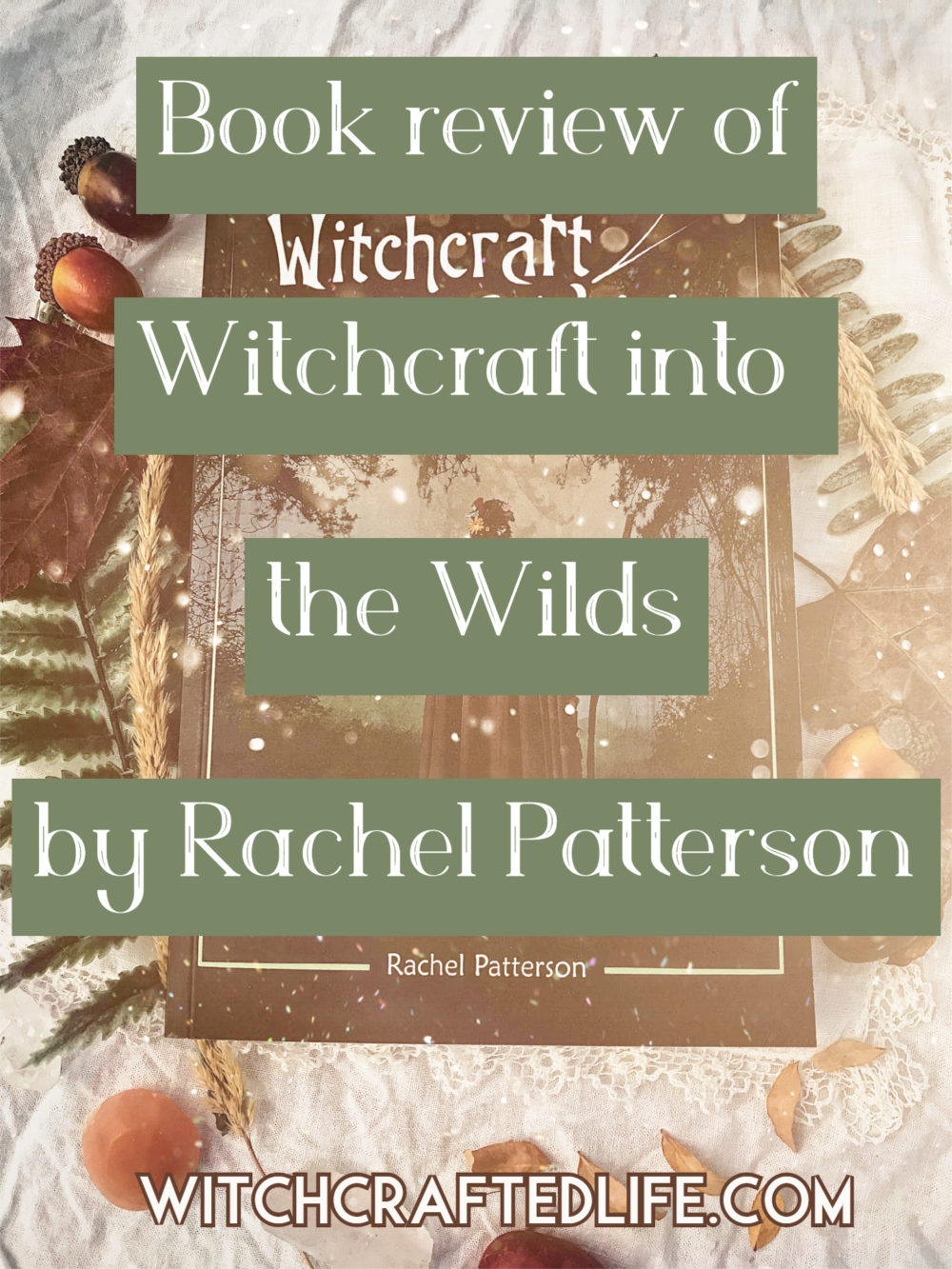 Book review of Witchcraft into the Wilds by Rachel Patterson