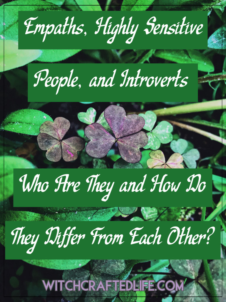 Empaths, Highly Sensitive People, and Introverts: Who Are They and How Do They Differ From Each Other?