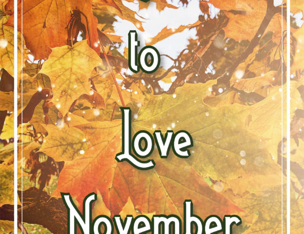 30 Reasons to Love November