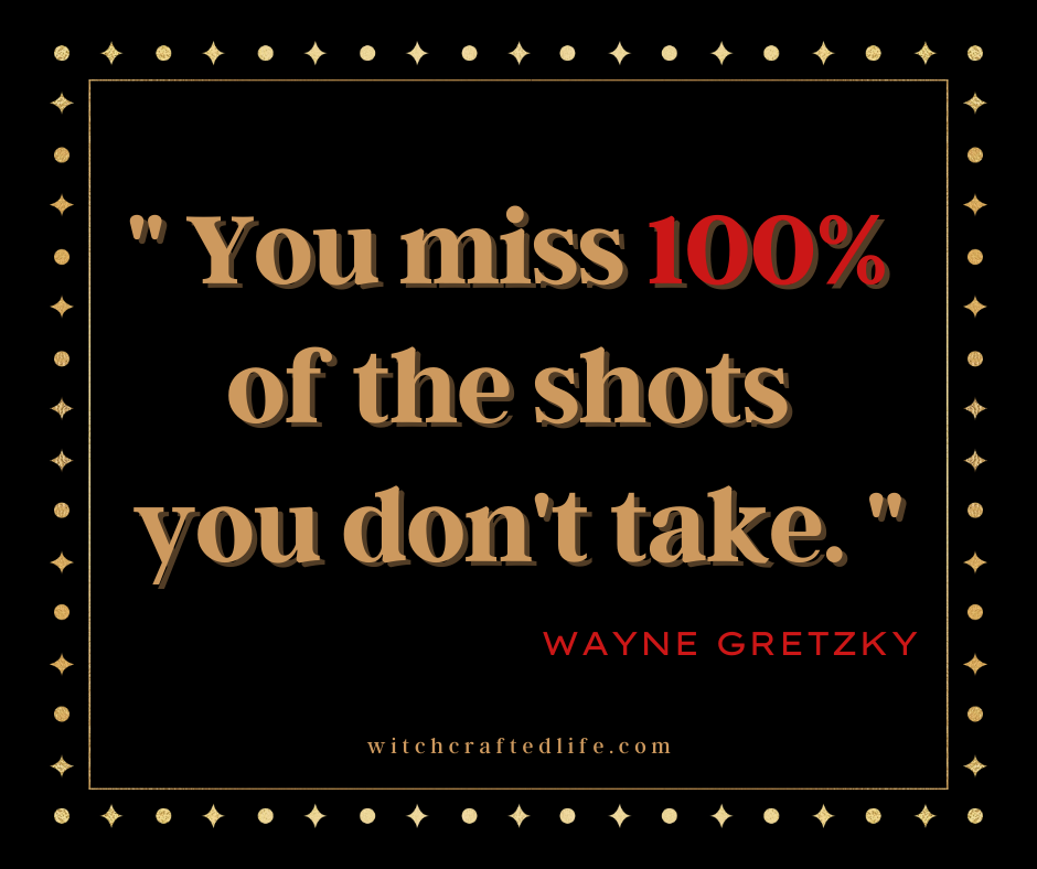 You Miss 100% of The Shots You Don't Take. ~ Wayne Gretzky quote