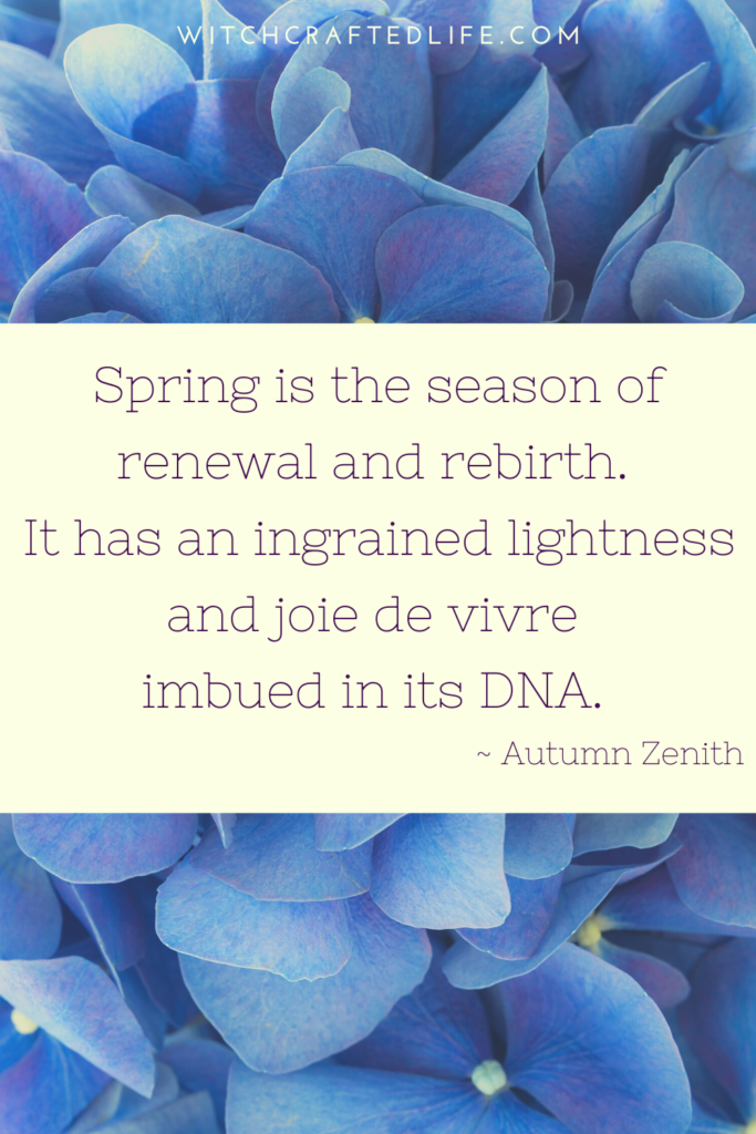 Spring is the season of renewal and rebirth quote by Autumn Zenith
