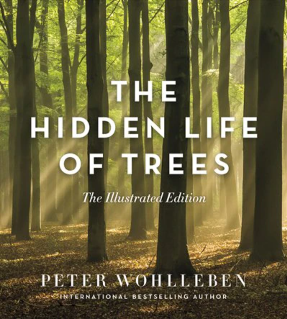 The Hidden Life of Trees: The Illustrated Edition by Peter Wohlleben