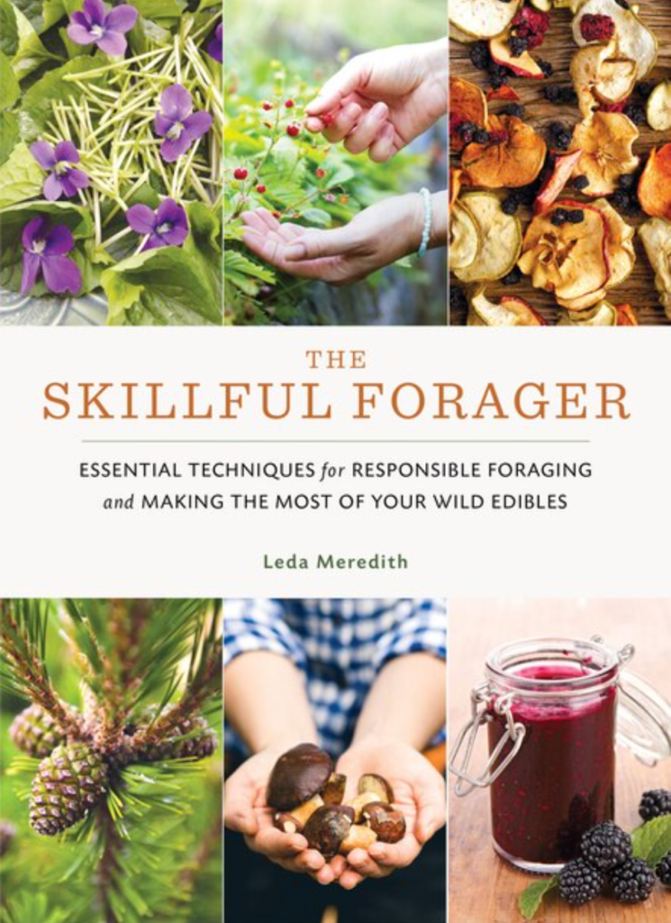 The Skillful Forager: Essential Techniques for Responsible Foraging and Making the Most of Your Wild Edibles by Leda Meredith